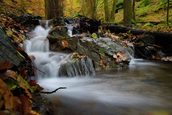 Photograph - Bodetal, Harz by Andreas Levi
