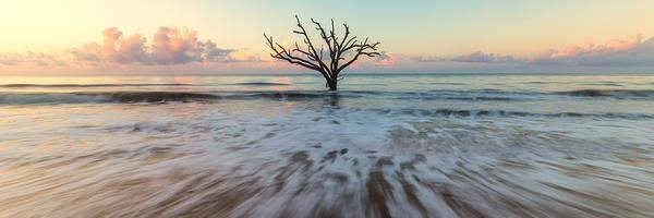 Photograph - Botany Bay Morning by Stefan Mazzola