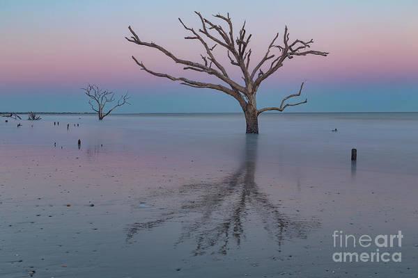 Photograph - Botany Bay Sunset by Richard Sandford