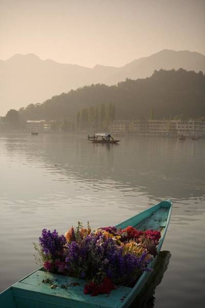 Dal Lake Photograph - Bouquet Of Flowers In Bow Of Boat Dal by David DuChemin