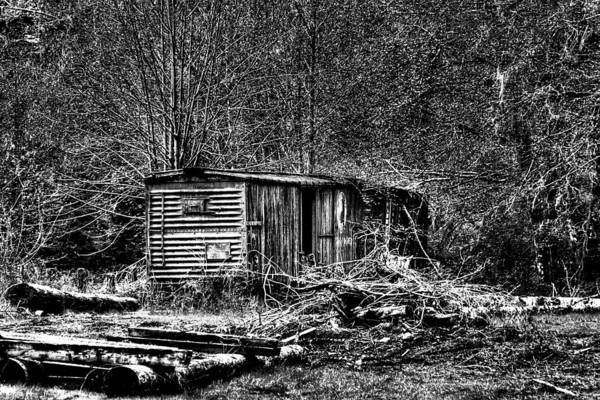 Photograph - Box Car by David Patterson
