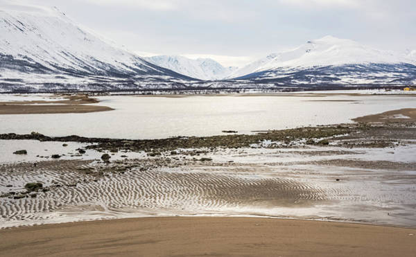 Breivik Nature Reserve Troms Norway Art Print
