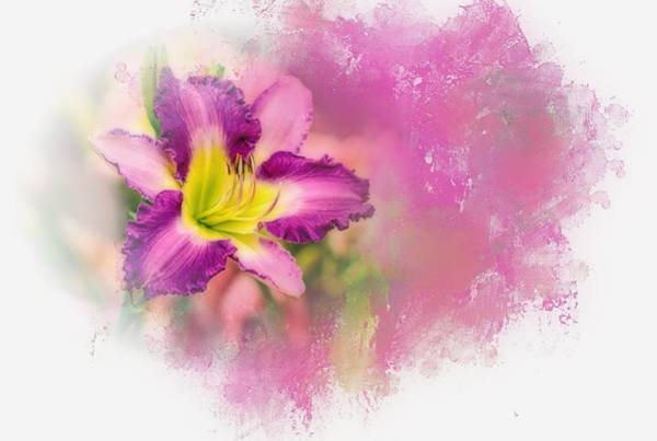 Wall Art - Photograph - Bright Lily by Ches Black
