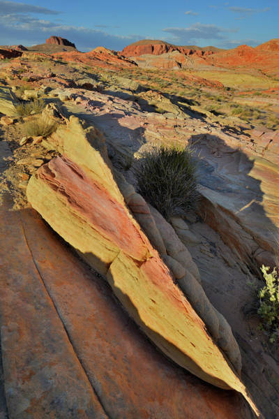 Photograph - Brilliant Colors Of Valley Of Fire State Park by Ray Mathis
