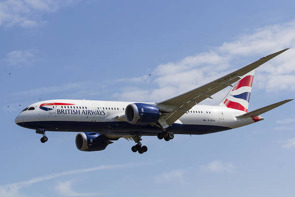 Wall Art - Photograph - British Airways And Birds by David Pyatt