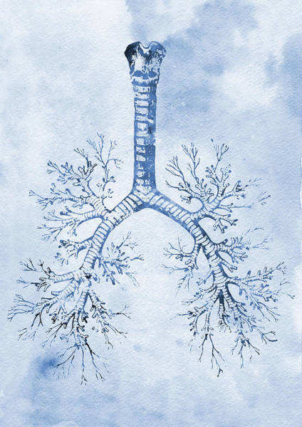 Lung Digital Art - Bronchial Tree X by Erzebet S
