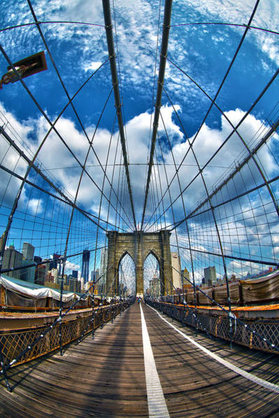 Steel Cable Wall Art - Photograph - Brooklyn Bridge by Mitch Cat
