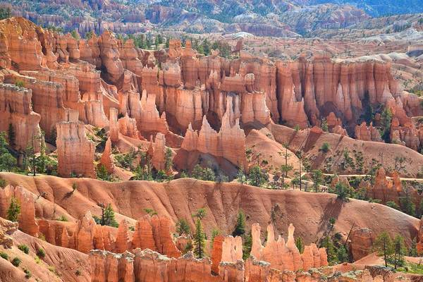 Photograph - Bryce Canyon's Queen Garden by Ray Mathis