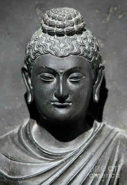 Wall Art - Sculpture - Buddha by Indian School