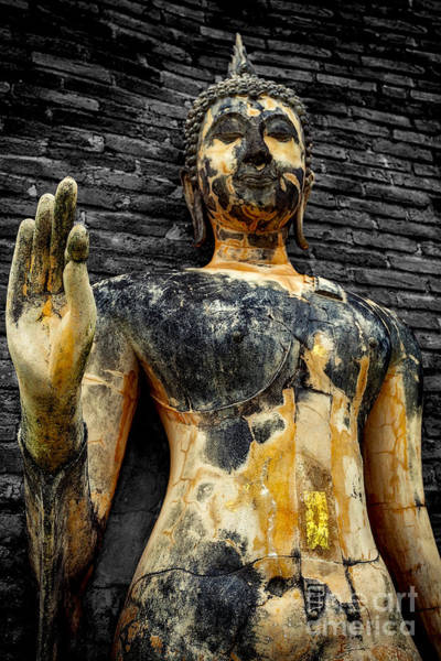 Thai Wall Art - Photograph - Buddha Statue  by Adrian Evans