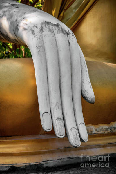 Wall Art - Photograph - Buddhas Hand by Adrian Evans