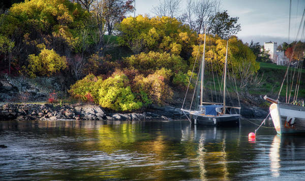 Photograph - Bygdoy Harbor by Ross Henton