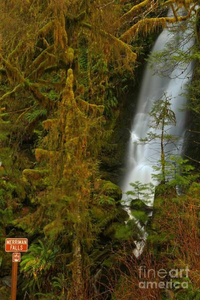 Photograph - Merriman Falls Sign by Adam Jewell
