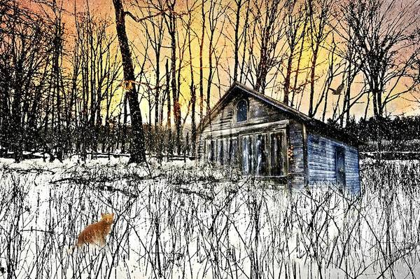 Cabin In The Woods Wall Art - Photograph - Cabin Fever by Diana Angstadt
