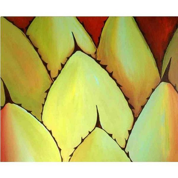 Wall Art - Photograph - Cactus Close Up by Karyn Robinson