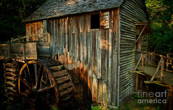 Photograph - Cades Cove Mill by Dave Bosse