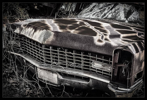 Junkyard Photograph - Cadillac by Robert Fawcett
