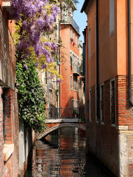 Wall Art - Photograph - Canal In Venice With Flowers  by Michael Henderson