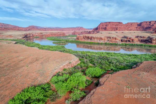 Photograph - Canyon Of Colorado River In Utah Aerial View by Marek Uliasz