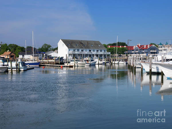 Wall Art - Photograph - Cape May Harbor New Jersey by Louise Heusinkveld