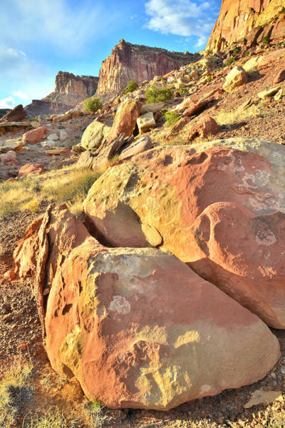 Photograph - Capitol Reef Boulders by Ray Mathis