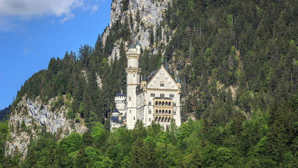 Photograph - Castle Neuschwanstein by Alexander Mayr