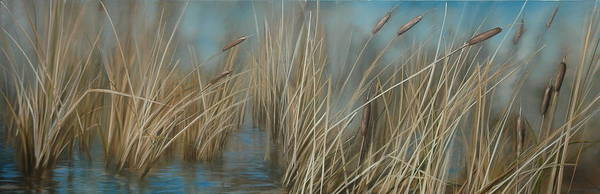 Bullrush Painting - Cattails by Richard Cole