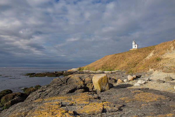 Wall Art - Photograph - Cattle Point Lighthouse by Stephanie McDowell