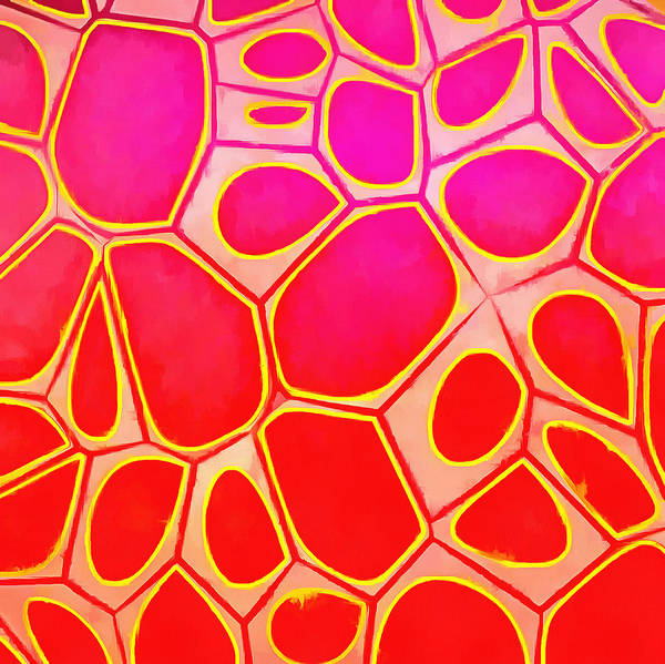 Wall Art - Painting - Cells Abstract Three by Edward Fielding