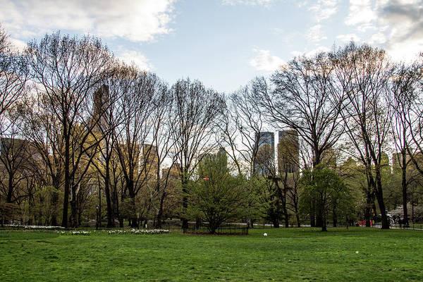 Photograph - Central Park Views  by Robert J Caputo