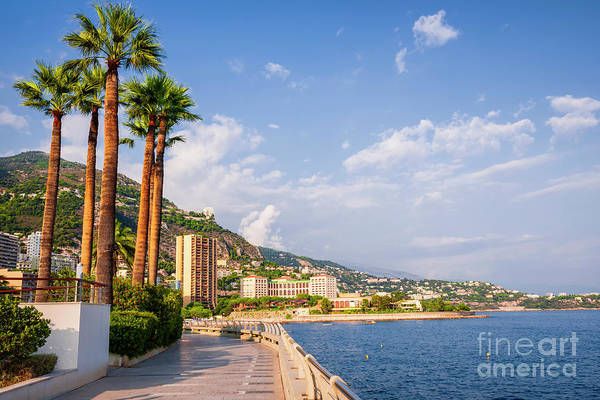 Photograph - Champions Promenade In Monaco by Elena Elisseeva