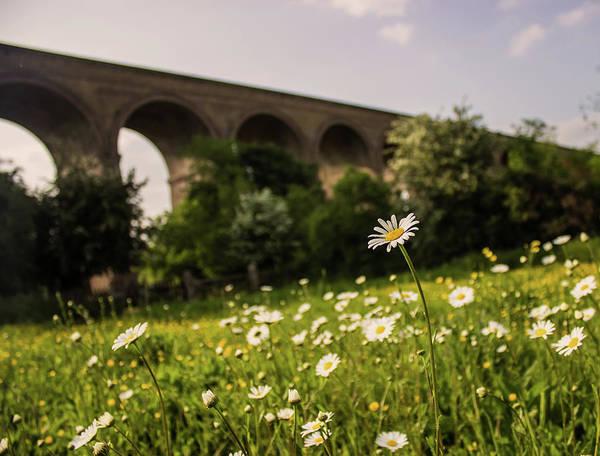 Essex Wall Art - Photograph - Chappel Viaduct by Martin Newman