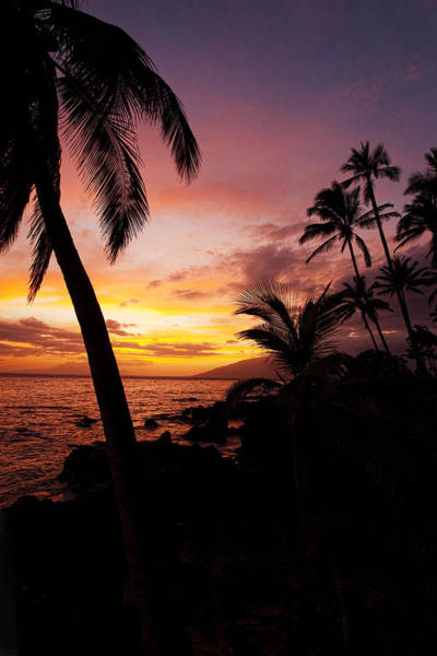 Kihei Photograph - Charly Young Sunset by James Roemmling