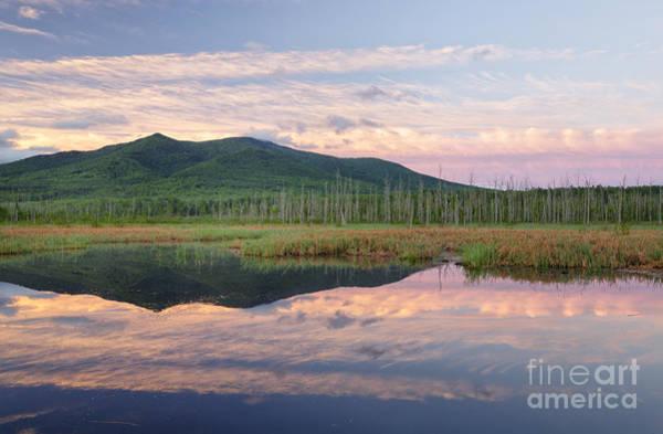 Photograph - Cherry Mountain - Pondicherry Wildlife Refuge New Hampshire by Erin Paul Donovan