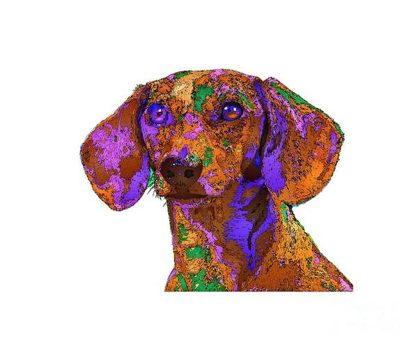 Digital Art - Chloe. Pet Series by Rafael Salazar