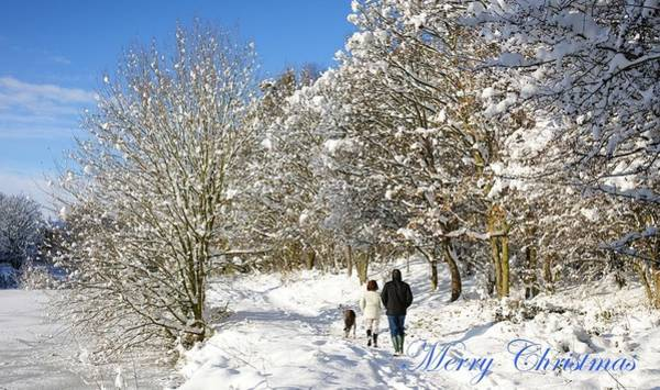 Photograph - Christmas Card 2 by David Birchall