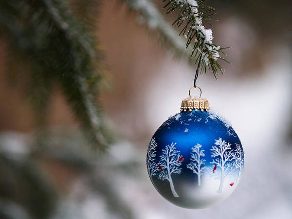 Photograph - Christmas Ornament by Jim DeLillo