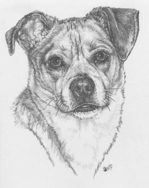 Mutt Drawing - Chugg by Barbara Keith