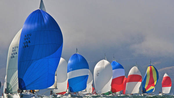 Spinnaker Photograph - City Spinnakers by Steven Lapkin
