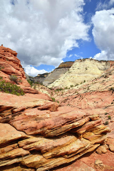 Photograph - Classic Zion by Ray Mathis