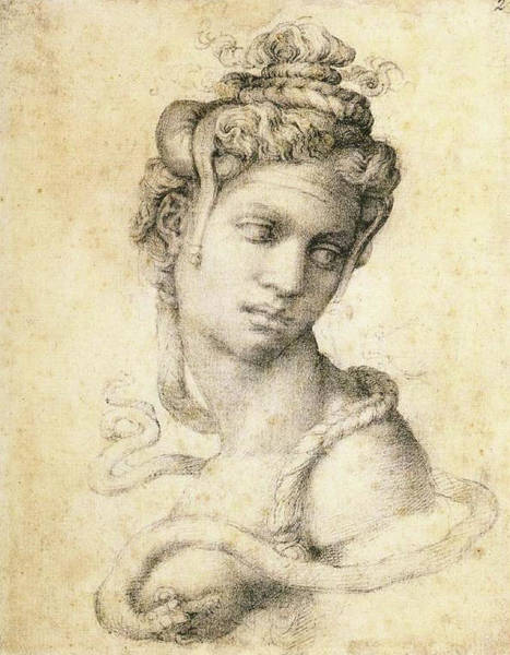 Royal Court Drawing - Cleopatra by Michelangelo Buonarroti