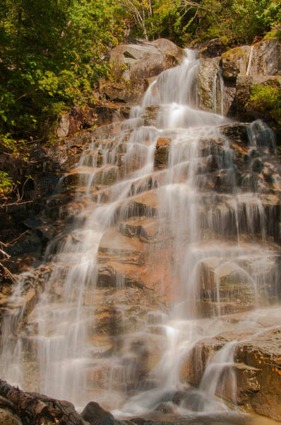 Photograph - Cloudland Falls by Brenda Jacobs
