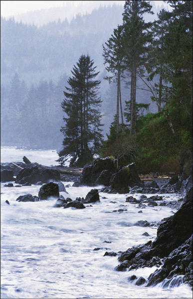 Photograph - Dramatic And Stormy Coastline Vancouver Island  by Kim Lessel
