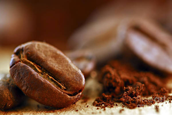 Still Life Wall Art - Photograph - Coffee Beans And Ground Coffee by Elena Elisseeva