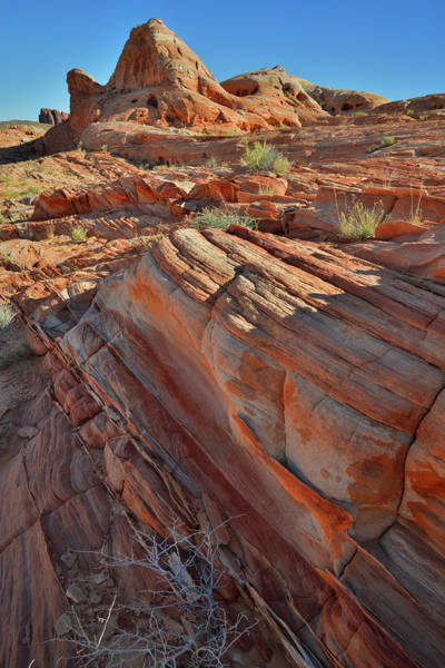 Photograph - Color Galore In Valley Of Fire by Ray Mathis