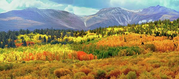 Photograph - Colorado Landscape by OLena Art Brand