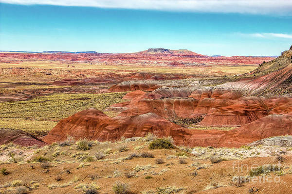 Photograph - Colors Of The Southwest by Jon Burch Photography