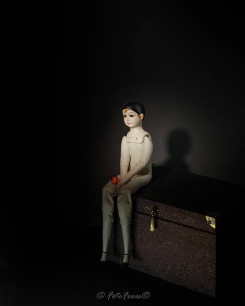 Photograph - Columbina's Gone by Alexander Fedin