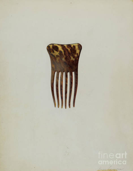 Wall Art - Drawing - Comb by Irene Lawson