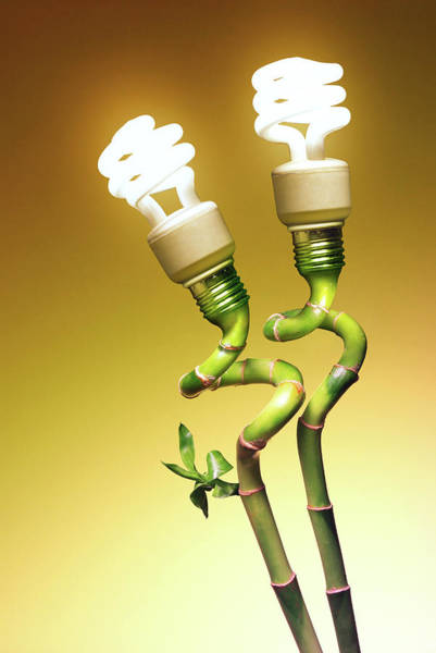 Energy-saving Wall Art - Photograph - Conceptual Lamps by Carlos Caetano